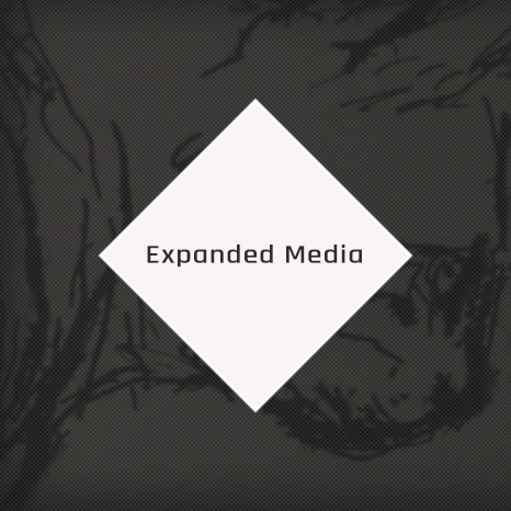 expanded media contraart